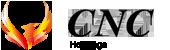 経営コンサルティング・士業ネットワーク・経営者支援ならCNCホールディングス